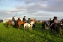 Horse riding at The Antlers - Family run bed and breakfast, Caithness, North of Scotland, UK